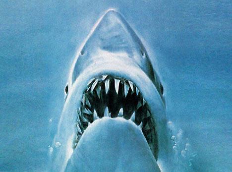 Jaws (Universal)