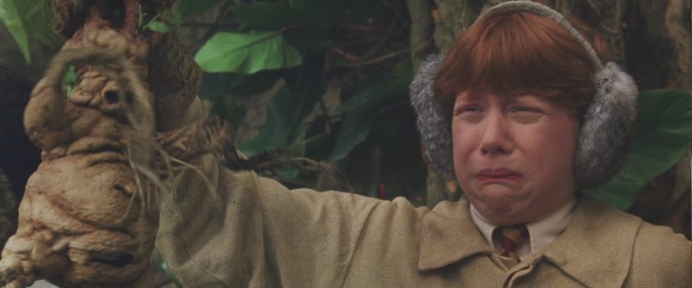 Rupert Grint in Harry Potter and the Chamber of Secrets (Warner Bros.)