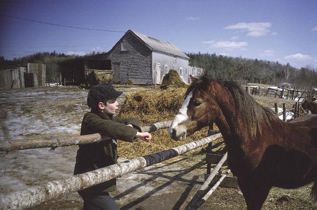 Pit Pony (1997, Cochran Entertainment)