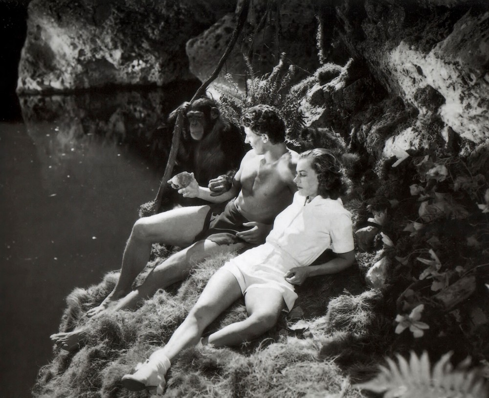Tarzan's Revenge (1938, Fox)