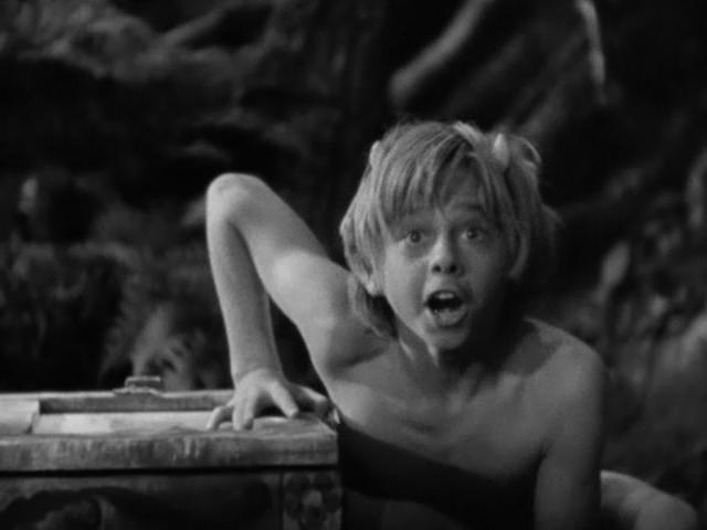 A Midsummer Night's Dream (1935, Warner Bros.)