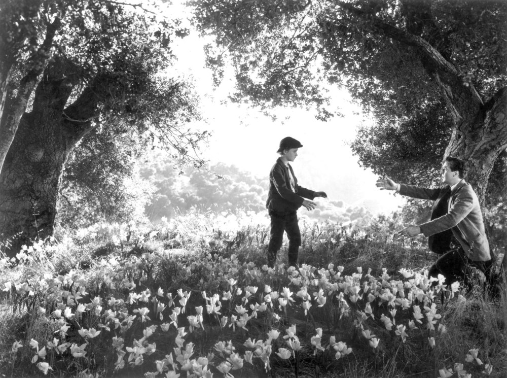 How Green Was My Valley (1941, 20th Century Fox)