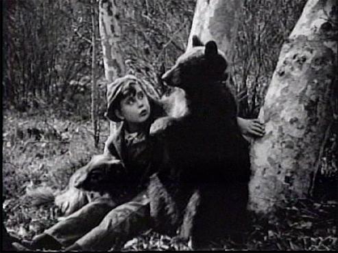 A Bear, a Boy, and a Dog (1921)