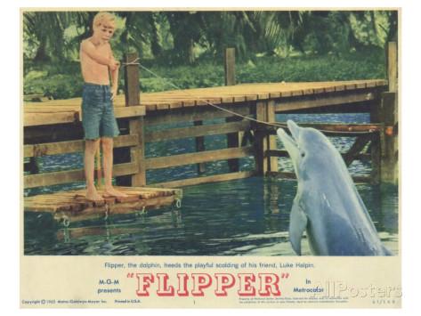 Flipper (1963, MGM)