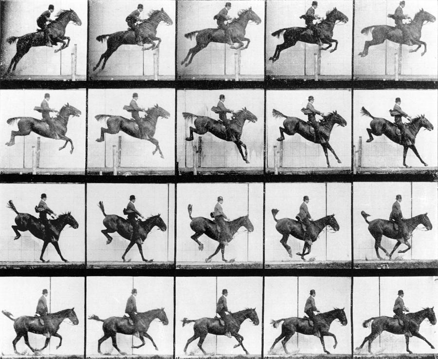 muybridge a history of motion Information about the eadweard muybridge collection this was the beginning of a relationship between stanford and muybridge that was to change the history of the moving image whilst muybridge experimented in synthesising motion from photography with his machine.