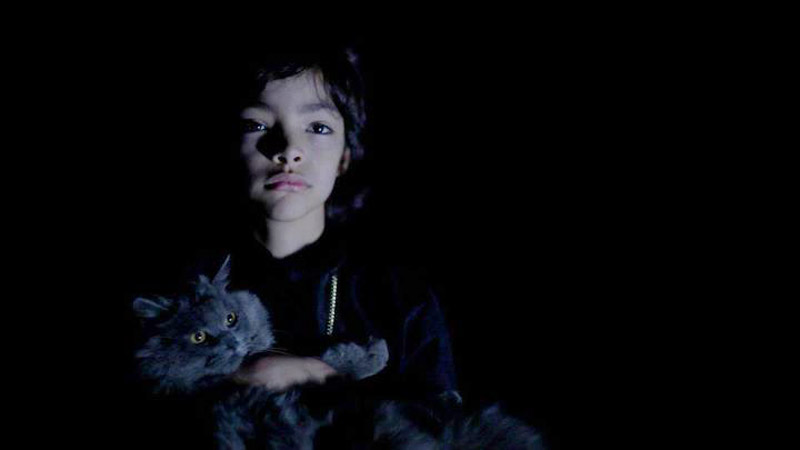 Children of the Night (2013, Artsploitation Films)
